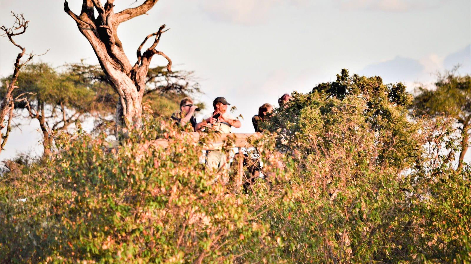 Turismo sostenible. La única salvación para la fauna y ecosistemas salvajes de Africa